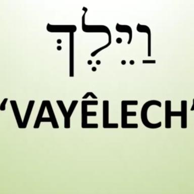 T52 - Vayalech